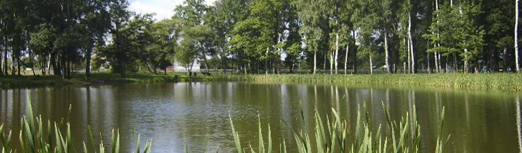Парк агрогородка Дашковка